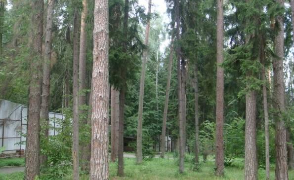 Продажа участка, Горышкино, Рублево-Успенское шоссе